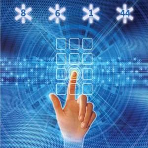 Integraline numerologija